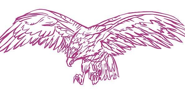Spread Feast Bird Fowl Eagle Wings Annexes Hunting