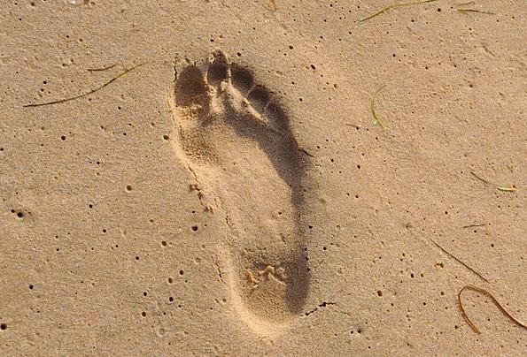 Footprint Footmark Vacation Marine Travel Beach Se