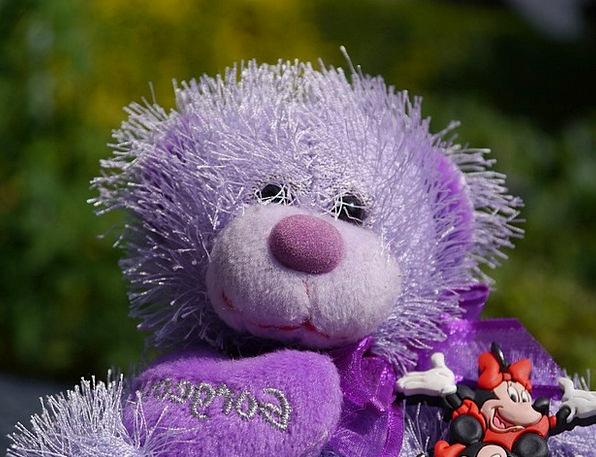 Teddy Bear Elaborate Bear Tolerate Purple Minnie M