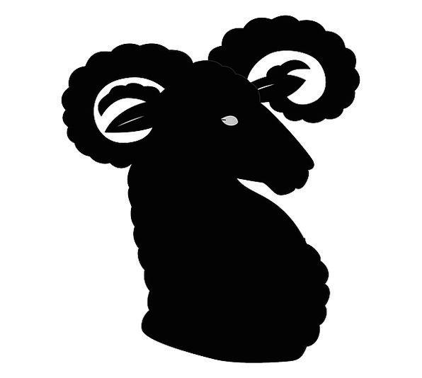 Ibex Skull Horns Sirens Head Capricorn Animal Phys