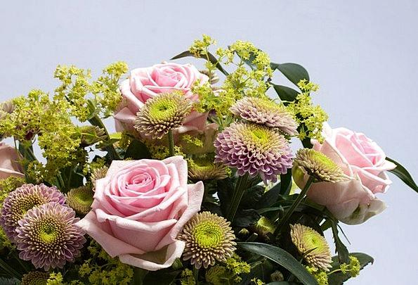 Roses Designs Landscapes Plants Nature Spring Coil