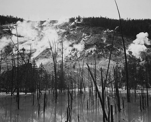 Yellowstone National Park Landscapes Nature 1930S