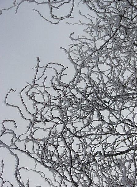 Ice Landscapes Division Nature Cold Emotionless Br