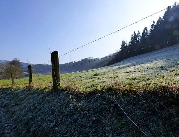 Fence Barrier Landscapes Cold Nature Ripe Ready Fr
