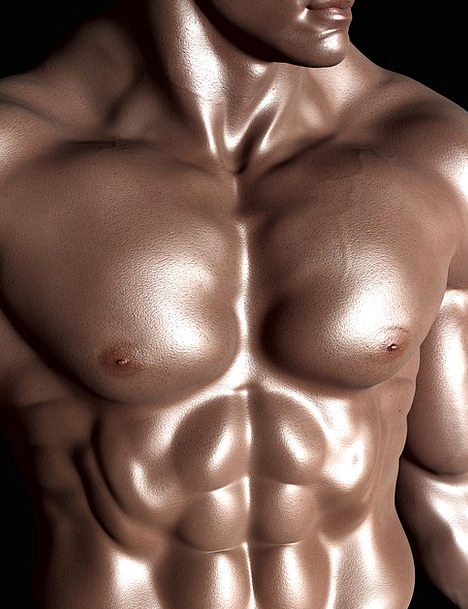 Bodybuilder Weightlifter Six-Pack Sixpack Human Mu