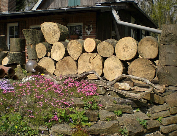Wood Straining Timber Wooden Strains Holzstapel Fi