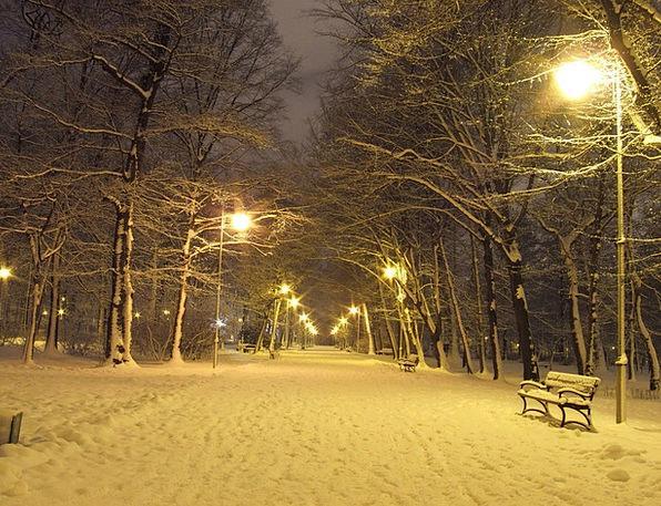 Park Common Season Night Nightly Winter Lanterns L