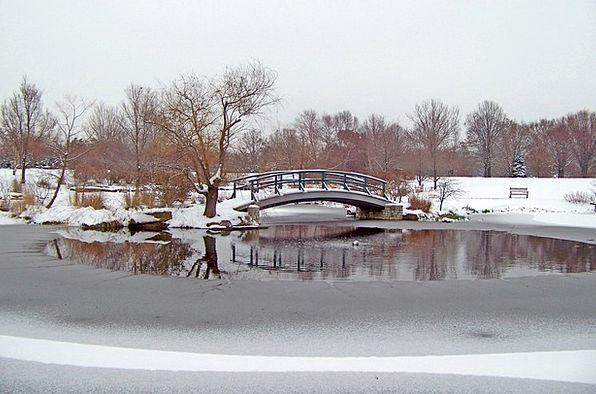 Winter Season Landscapes Bond Nature Snow Snowflak