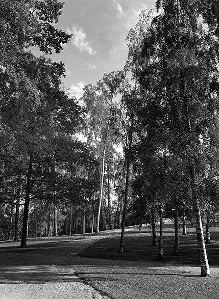 Helsinki Landscapes Nature Landscape Scenery Finla