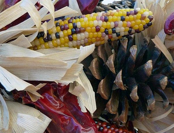 Decoration Beautification Dehydrated Corn Goo Drie