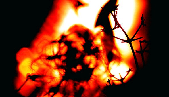 Fire Passion Blaze Glow Radiance Flame Radio Wirel