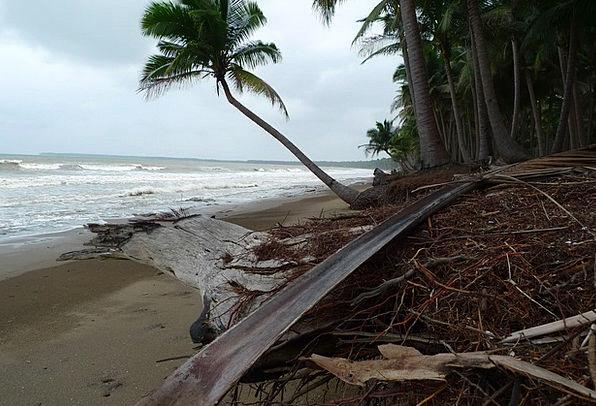 Beach Seashore Vacation Travel Erosion Corrosion T