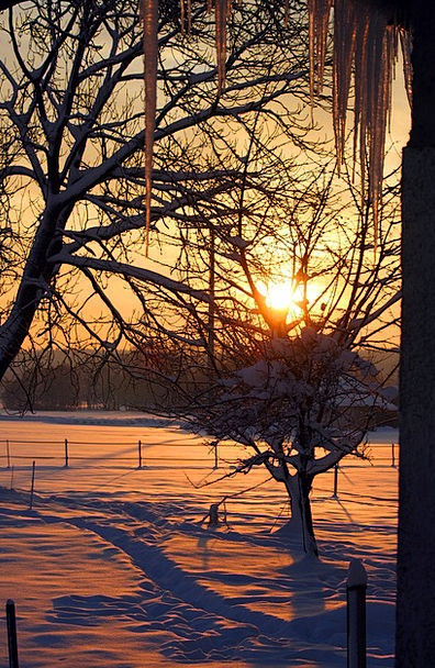 Sunrise Dawn Landscapes Snowflake Nature Icicle St