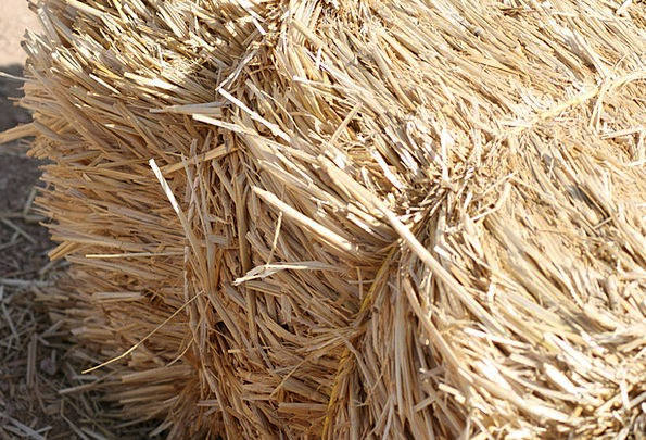 Hay Security Straw Grass Bail Material Residue Rem