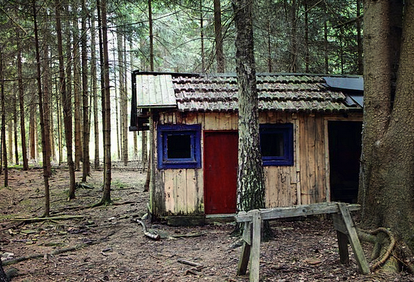 Hut Shed Landscapes Woodland Nature Log Cabin Fore