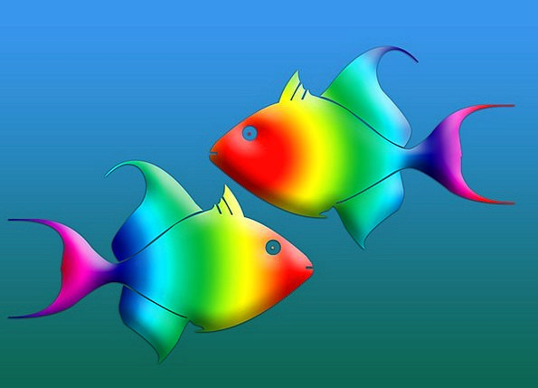 Fish Angle Project Animals Faunae Design Symbols C
