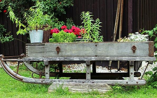 Garden Plot Landscapes Nature Slide Transparency D