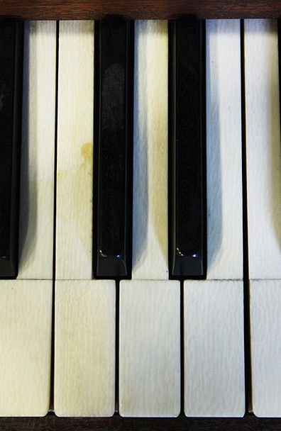 Piano Keyboard Play The Piano Piano Keys Musicians