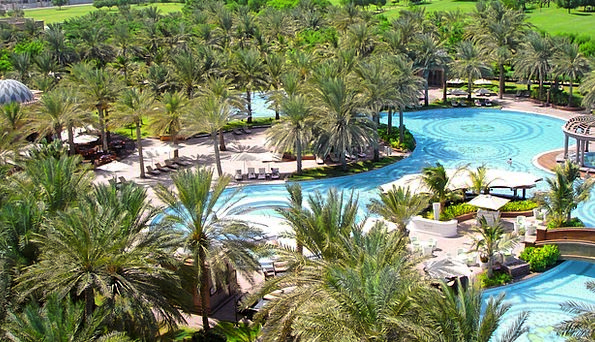 Swimming Pool Baths Garden Plot Palm Trees Water A