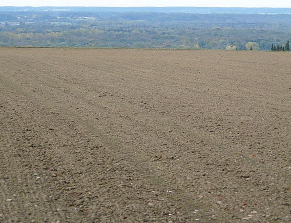 Arable Terrestrial Floor Land Loosening Up Arable