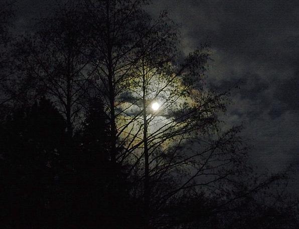 Moon Romanticize Landscapes Late Nature Moonlight