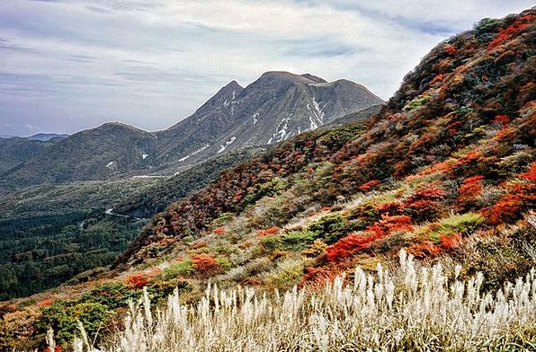 Aso Japan Kumamoto Autumnal Leaves