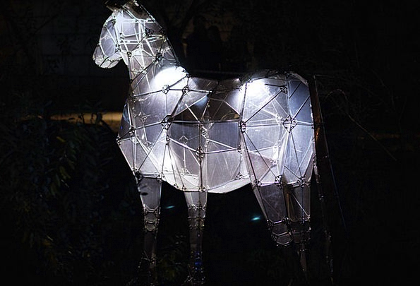 Horse Mount Physical Night Nightly Animal Light Br