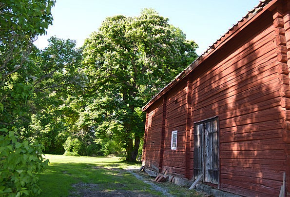 Timber Cottage Buildings Architecture Summer Straw