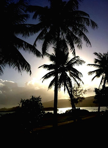 Guam Hot Far Distant Tropical East Trees Sea Islan