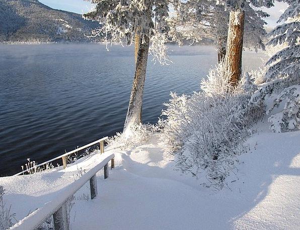 Sunny Sunlit Landscapes Nature Snow Snowflake Wint