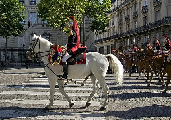Paris Buildings Architecture Horses Cattle France