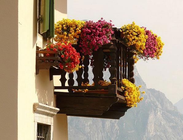 Balcony Circle Buildings Plants Architecture Geran