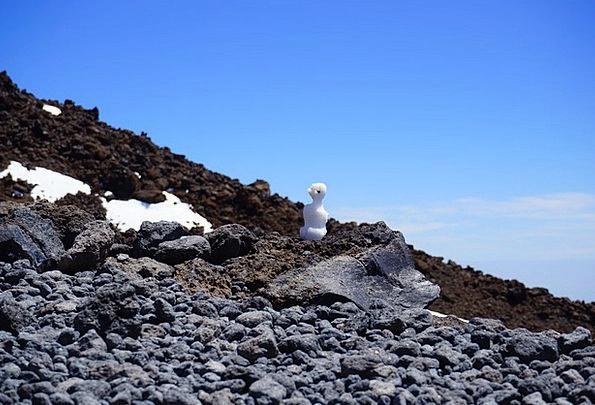 Snow Man Small Minor Mini Melted Molten Lava Basal