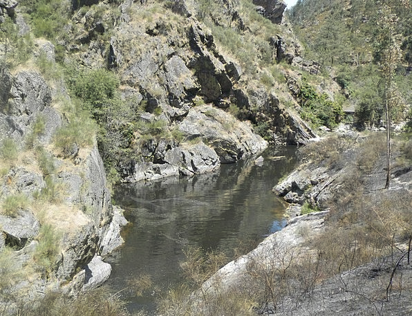 Ferreira River Pool Water Aquatic Pond Refreshing