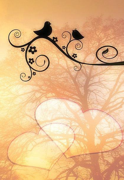 Bird Fowl Chirp Love Darling Twitter Simply Romanc