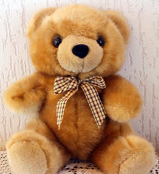 Teddy Tolerate Teddy Bear Bear Bears Tolerates Pur