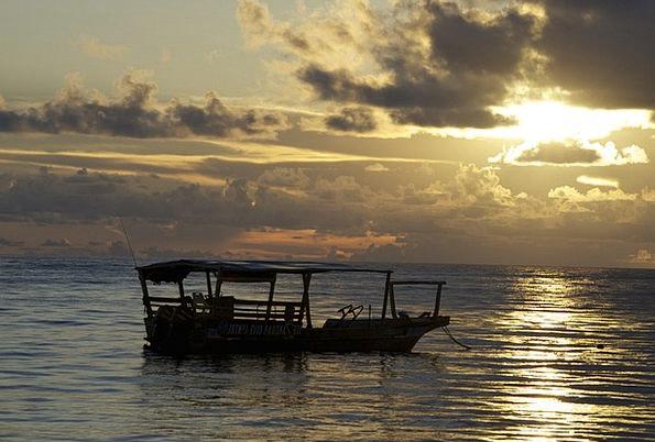 Dhow Boat Vacation Sundown Travel Africa Sunset Ta