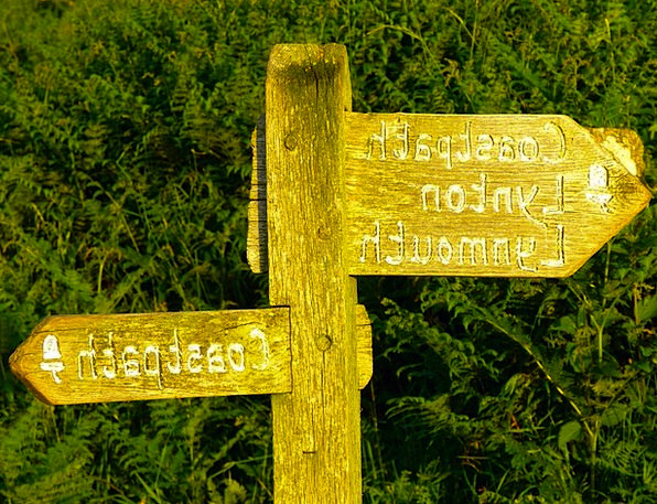Directory Almanac Timber Signposts Wood Direction