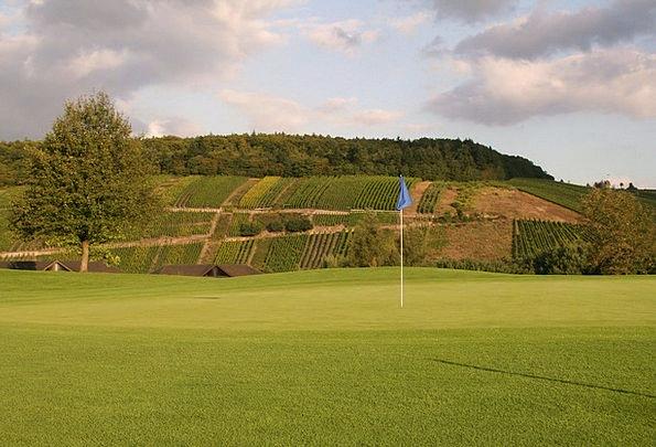 Golf Haste Green Lime Rush Flag Standard Vineyards