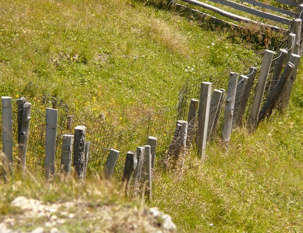 Fence Barrier Landscapes Timber Nature Meadow Fiel