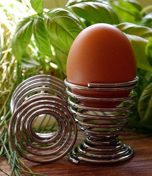 Egg Ovum Container Eggcup Holder Shell Bomb Raw Eg