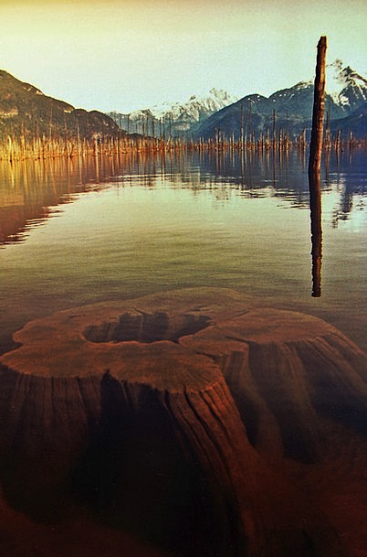 Lake Freshwater Landscapes Nature Water Aquatic Tr