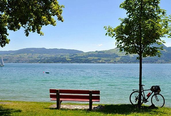 Lake Zurich Landscapes Nature Water Aquatic Park B