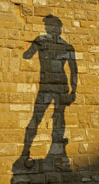 Shadow Gumshoe Michelangelo David Florence Beautif