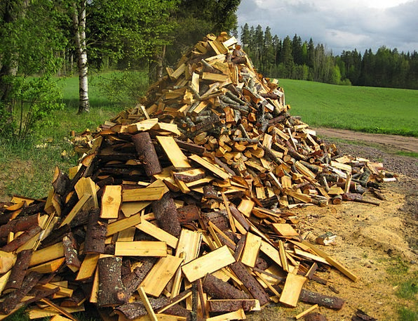 Early Summer Landscapes Kindling Nature Woodpile F