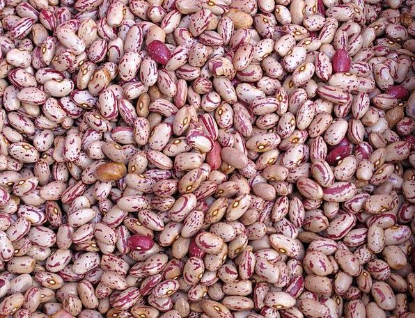 Beans Drink Peas Food Food Nourishment Legumes