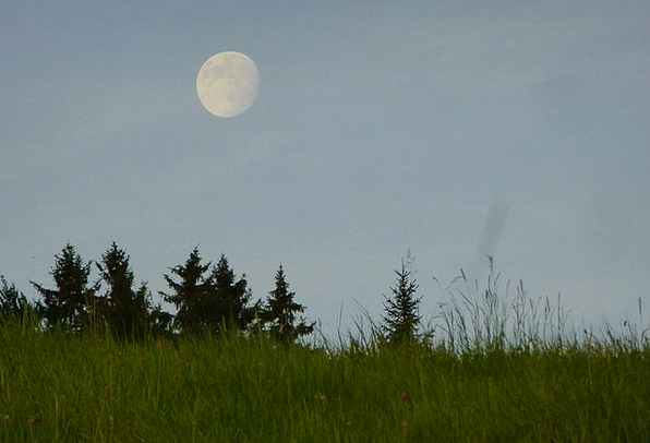 Full Moon Twilight Meadow Field Dusk