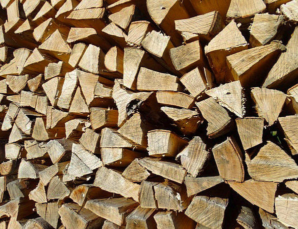 Holzstapel Kindling Growing Stock Firewood Stacked