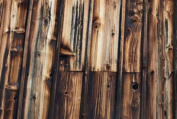 Wood Timber Textures Backgrounds Wall Partition Wo