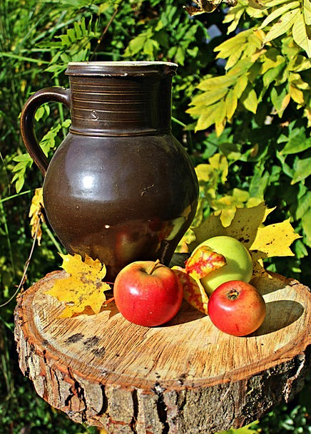 Apple Drink Fall Food Still Life Autumn Beer Stein